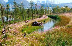 Parque de humedales Liupanshui Minghu por Turenscape. Fotografía © Kongjian YU. Señala encima de la imagen para verla más grande.