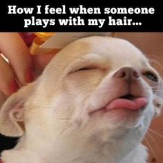 or lightly scratches my back lol