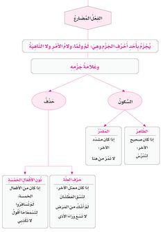 الدرس الثامن: جزم الفعل المضارع Arabic Language, Learning Arabic, Worksheets, Quotations, Teacher, Writing, Words, School, Islamic