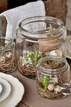 Spring in a Jar: Bulb, Flowers and eggs. Spring in a Jar: Bulb, Flowers and eggs. Easter Table, Easter Party, Easter Eggs, Large Mason Jars, Diy Ostern, Centerpieces, Table Decorations, Spring Decorations, Outdoor Decorations