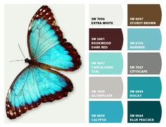 Creatures in nature could inspire your next paint color palette. Living Room Paint Colors With Brown Furniture Paint Color Palettes, Paint Color Schemes, Peacock Color Scheme, Aqua Color Palette, Paint Colors For Home, House Colors, Living Room Color Combination, Small Bedroom Colours, Bedroom Small