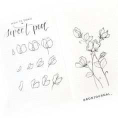 Flower Doodles Discover How to Draw Easy Flower Doodles for Bullet Journal Spreads How to draw beautiful flower doodles in your bullet journal! These easy flower drawing tutorials will have you doodling flower patterns all over your bujo.