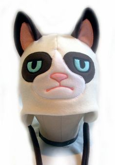 Grumpy Cat, the hat
