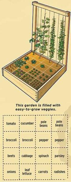 Raised Vegetable Gardens, Starting A Vegetable Garden, Vegetable Garden Design, Vegetable Gardening, Small Home Vegetable Garden Ideas, Vegtable Garden Layout, Vegetable Boxes, Vegetable Ideas, Allotment Gardening