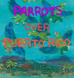Image result for parrots over puerto rico
