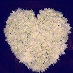 Heart of chrysanthemums