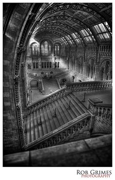Natural History Museum London in HDR