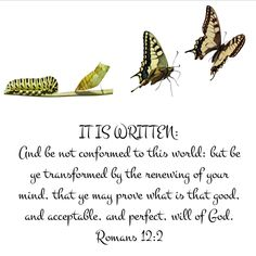 Romans Don't copy the behavior and customs of this world, but let God transform you into a new person by changing the way you think. Then you will learn to know God's will for you, which is good and pleasing Bible Verses Quotes, Bible Scriptures, Romans 12 2, Surrender To God, Butterfly Quotes, I Believe In Love, New Living Translation, Let God, Knowing God