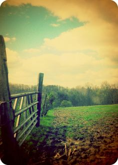 Country side (:
