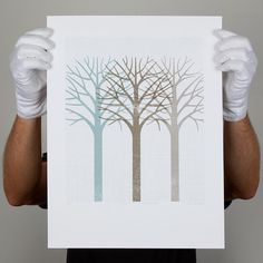 Winter Wonderland Print by Greg Straight
