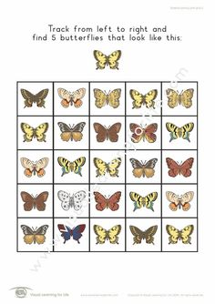 "In the ""Butterfly Tracking"" worksheets, the student must find all the butterflies that look the same as the example at the top of the page. Learning For Life, Visual Learning, Figure Ground Perception, Worksheets, Butterflies, Track, Student, Top, Runway"