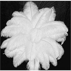 ERGEOB® Natural 10-12 Zoll weißen Straußenfedern für Karneval Rosen Montag Halloween Fest Basteln Bedarf Verschiede.Farbe