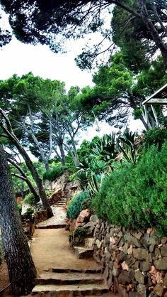 The Cap Roig Botanical Garden is located in Palafrugell, Catalonia Considered one of the most important botanical gardens in the Mediterranean, its beauty is multiplied with the impressive terraces from which you can see the sea. Nature, art, culture and history come together in this special spot.