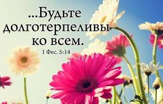 Одноклассники Biblical Verses, Bible Scriptures, Christian Cards, Christian Quotes, Wise Quotes, Wise Words, Christianity, Prayers, Photo Wall