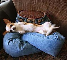 Jeans reciclado, cama de cachorro nova !