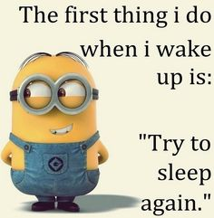 Try to sleep again Cute Minions, My Minion, Minion Humor, Smiles And Laughs, Just For Laughs, Best Quotes, Life Quotes, Life Sayings, Trying To Sleep