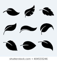 Silhouette Leaves Images, Stock Photos & Vectors
