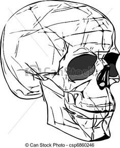 Cracked Skull Drawing Google Search Drawing