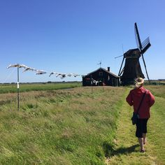 Biking in the Netherlands countryside. #biking #cycling #windmill