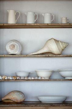 the art of shelf composition. photo by marili forastieri.