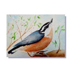ACEO Original Art  Nuthatch Backyard Bird Watercolor Painting