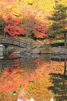 A fall of Japanese garden.