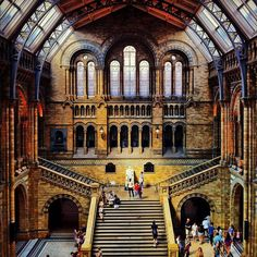 Our Photo of the Day was taken in Natural History Museum in London.     If you like this photo you have to see other Chrislloydy photos at http://placeknow.com/user/chrislloydy-4859.html    Have a nice day at www.placeknow.com!