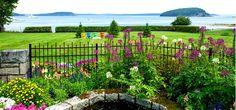 Garden with flowers overlooking waters