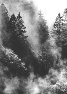 Wilderness // Hiking // The Great Outdoors // His Creation // Black and White