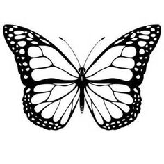 monarch butterfly wings coloring page - Bing Images