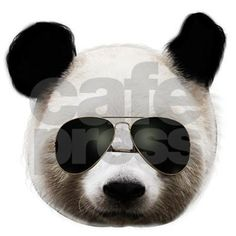 aaf50f3115 cool panda sunglasses T-Shirt Cool Panda