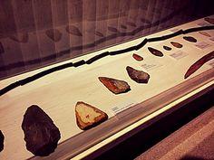 #Wildgehege #Neandertaler #Museum #Natur #Neandertal #Neanderthal-Museum #Reisen #Travel #Familie #Familienausflug #Tiere #Wald #Ferienwohnung #Werkzeug
