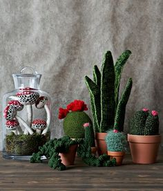 crocheted houseplants Ive got a cactus I picked up at a thrift store called doof naxcemi in new Mexico used to be a mexican food restaurant get it Crochet Cactus, Crochet Art, Crochet Home, Cute Crochet, Crochet Flowers, Crochet Patterns, Yarn Crafts, Diy Crafts, Diy Fleur