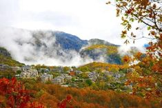 Autumn in Monodendri, Ioannina, Greece Travel Maps, Places To Travel, Greek Flowers, Seasons In The Sun, Places In Greece, Greek Beauty, Forest Mountain, Paradise On Earth, Archaeological Site