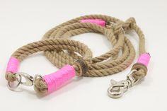 Dog Collar & Lead in