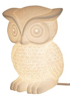 Nocturne-owl Lifestyle Lamp, from ModCloth. Wow- had no idea that owls were all the rage until I bought baby bedding with one on it! Cute Night Lights, Owl Lamp, Owl Always Love You, Horned Owl, Just Dream, Cute Owl, Room Wall Decor, Nocturne, Modcloth