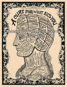 A Cure for What Ails You Victorian Drugs Phrenology Head Medical Poster | eBay