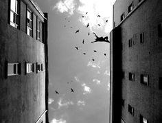 Horacio Coppola: maestro della fotografia argentina