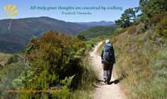 All truly great thoughts are conceived by walking. (As are many answers.)