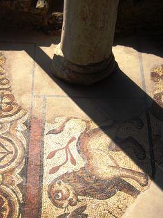 Mosaicos Romanos no Campo Arquelógico de Mértola, Beja, Portugal