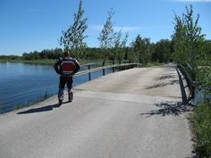Unonen Bridge at Iittala and midsummer birch trees