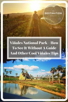 Cuba Travel | Travelling Cuba - Visiting Vinales Nationa Park? Here is how to see it without a guide and other cool Vinales tips!