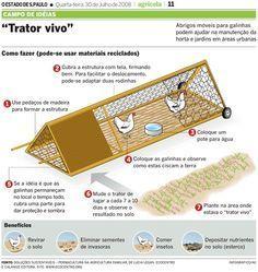 Para os criadores de animais mais tradicionais, animais domésticos como a galinha, as codornas e os coelhos podem ser criados para coletar esterco. As galinhas podem trabalhar como tratores vivos,...