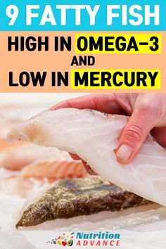 9 Fatty Fish High in Omega-3 (and Low in Mercury) | Omega-3 is important to our overall health. However, mercury contamination in fish is a big issue. Here are nine fatty fish high in omega-3 but low in mercury. | Getting an adequate ratio of omega-3 to omega-6 is important for any diet, and that includes low carb, keto, paleo and any other diets. | Read the article at: http://nutritionadvance.com/fatty-fish | Via: @nutradvance via @nutradvance
