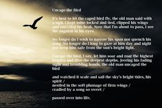 Birds are meant to fly and so are dreams! His Eyes, Meant To Be, Poems, Birds, Let It Be, Sayings, Lyrics, Poetry, Verses