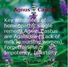 Key attributes of homeopathic single remedy Agnus Castus are Agalactia ( Lack of milk in nursing women), Forgetfulness, Impotency, Infertility. http://www.rxhomeo.com/pharmacy/homeopathic.php?act=viewProd&productId=109&pName=AGNUS+CASTUS