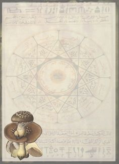 Book of Shadows Pages Free | Gift For All Our Readers – Free Book Of Shadows Pages! | Moon ...