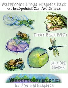 Frog Graphics Pack - 6 Hand-painted Watercolor Elements - All Hi-Res, Clear-Backed PNGs