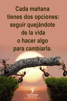 Positive Phrases, Motivational Phrases, Positive Vibes, Positive Quotes, Spanish Inspirational Quotes, Spanish Quotes, Wise Quotes, Words Quotes, Famous Quotes