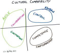 Culture Compatibility